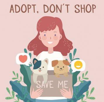 adopteren dierenasiel groningen